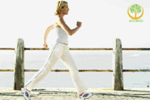 walking exercises to lose belly fat